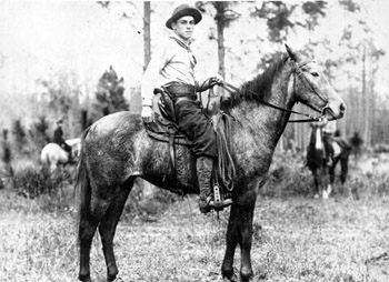 old photo of Florida cow hunter on open range