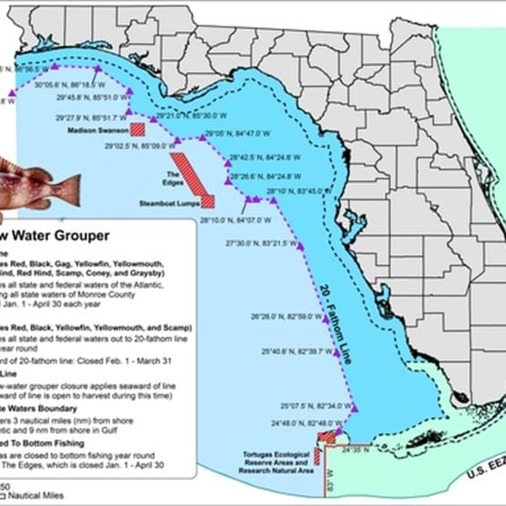 Shallow water grouper map