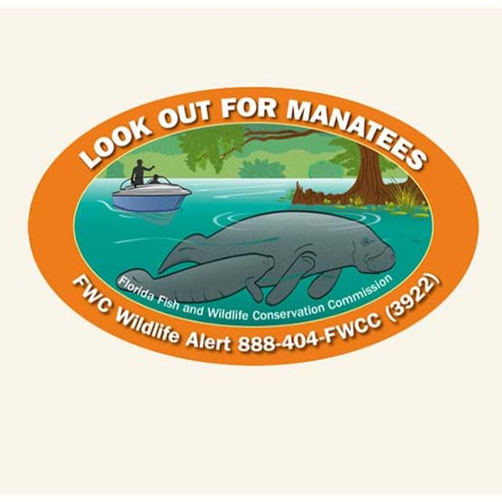 "2017-2018 ""Look out for manatees"" decal by Mike Hunter, FWC."
