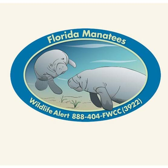 "2012-2013 ""Springs help Florida manatees survive"" decal by Ann Marie Tavares."