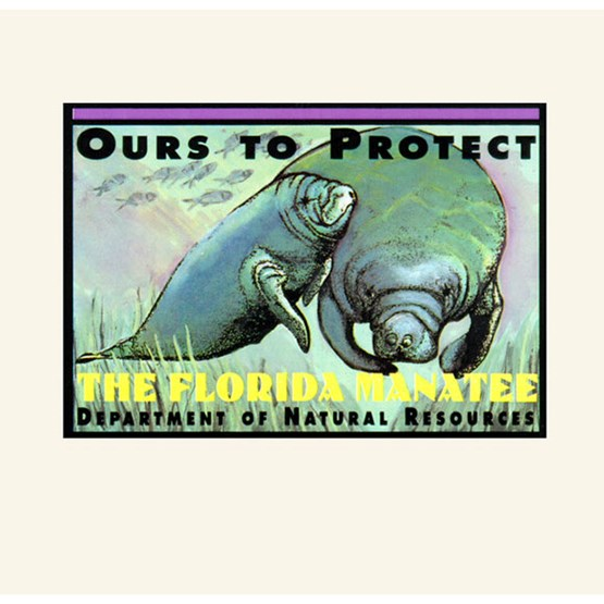 "1993-1994 ""Ours to protect"" decal by Georgia Murphy-Steadham."