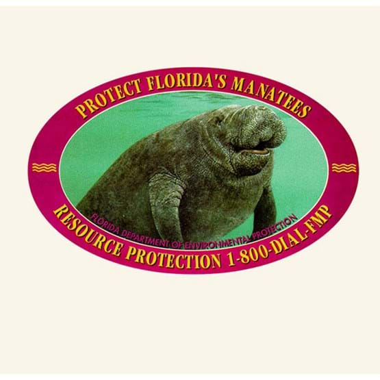 "1996-1997 ""Smiling manatee of King's Bay"" decal by Marcia Armstrong."