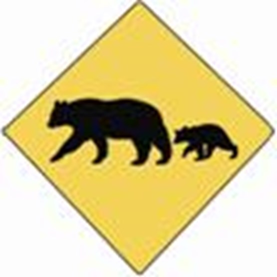 Bear Sign (adult and cub)