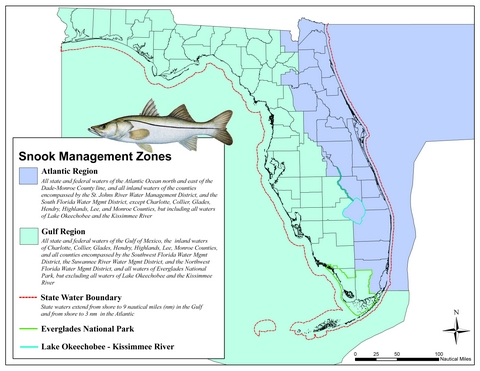 Snook map