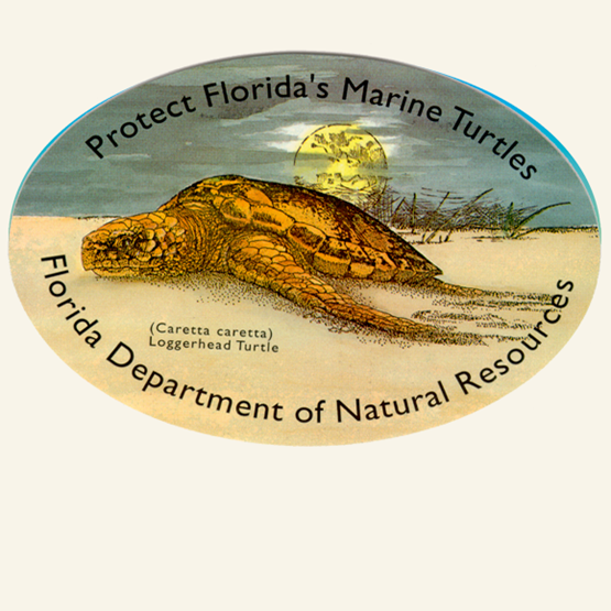 "1993-1994 ""Loggerhead"" decal by Florida Department of Natural Resources"