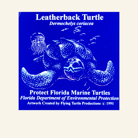 "1995-1996 ""Leatherback"" decal by Jamie Serino."