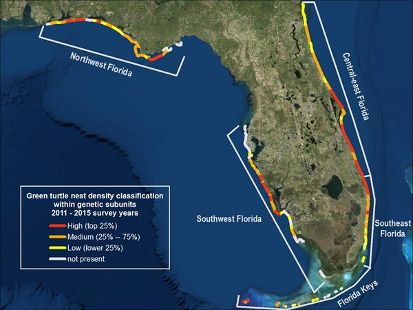 Map of Green Turtle Nest Density