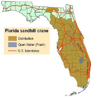 Florida Snadhillcrane Map