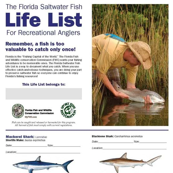 Photo of front of Saltwater Fish Life List Brochure