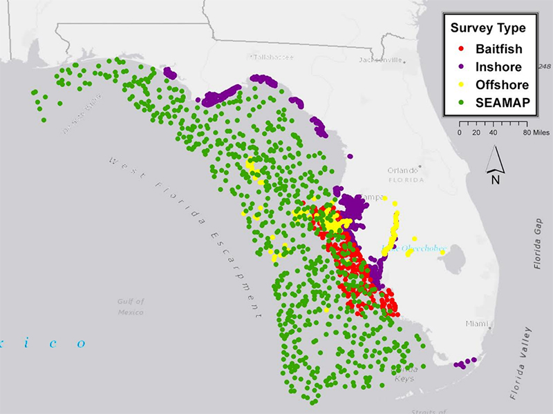 Map of the locations of the Gulf of Mexico samples