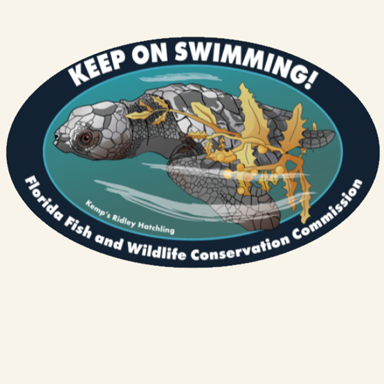 2019-2020 Sea Turtle Decal