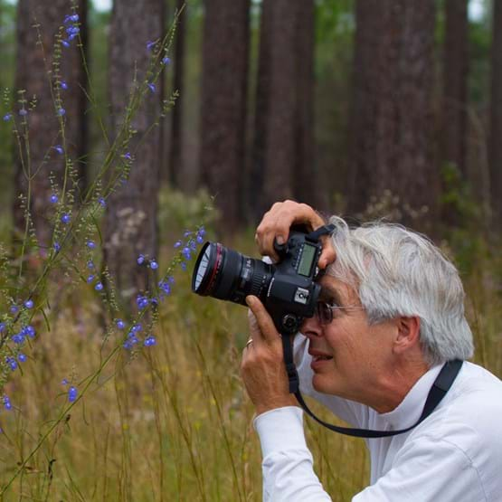 Man taking photograph in the forest