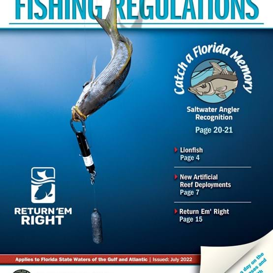 Saltwater Recreational Fishing Regulations Cover 2020