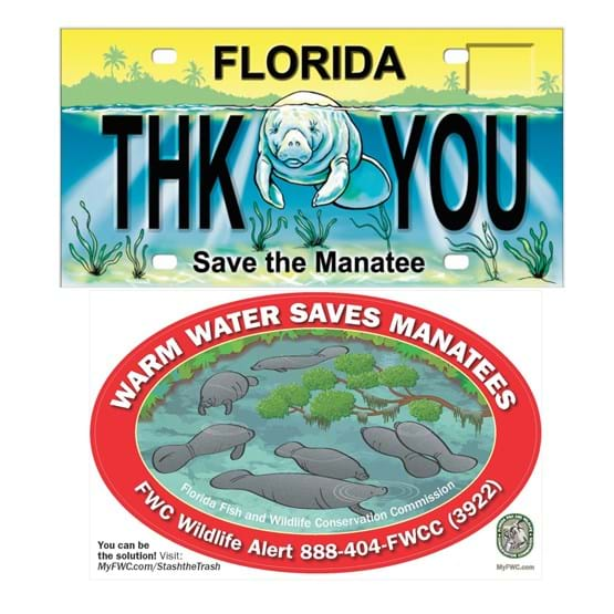 Manatee license plate and 2019 decal