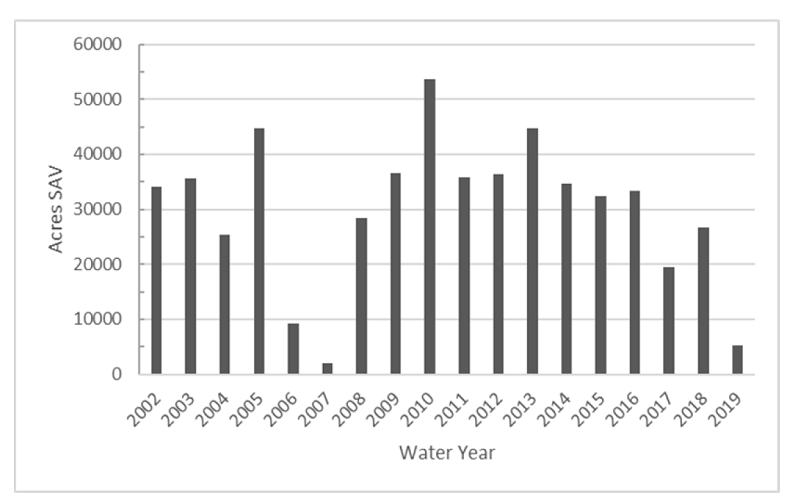 This bar graph demonstrates the total submerged aquatic vegetation on Lake Okeechobee by water year.