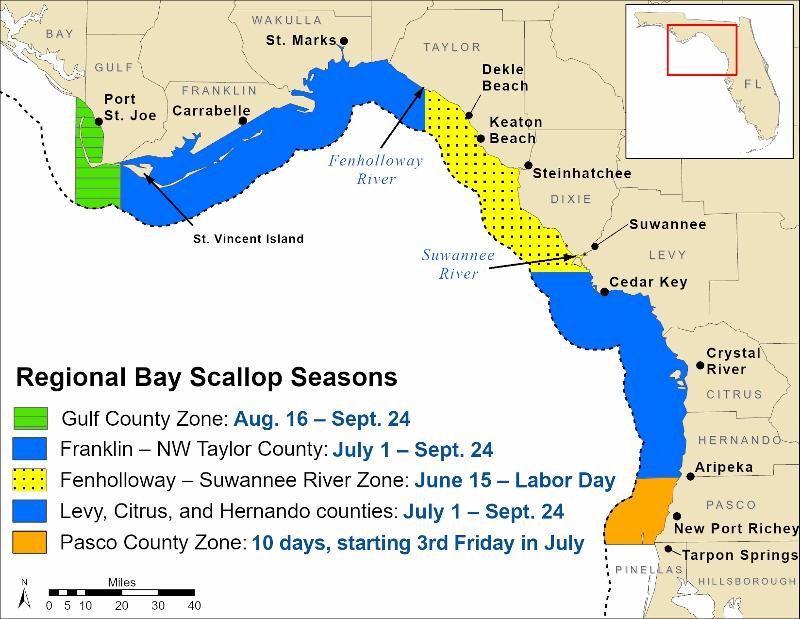 Regional Bay Scallop Seasons Map