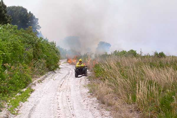 Biologist driving an all terrain vehicle and conducting a prescribed fire