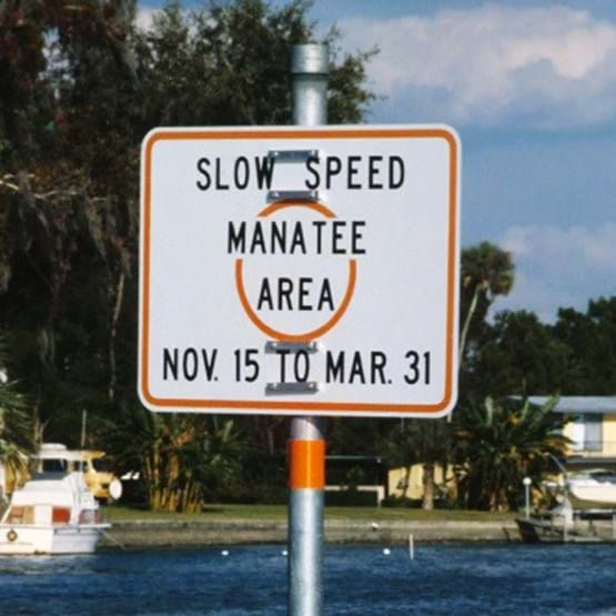 "Sign that reads ""Slow Speed, Manatee Area, November 15th to March 31st"""