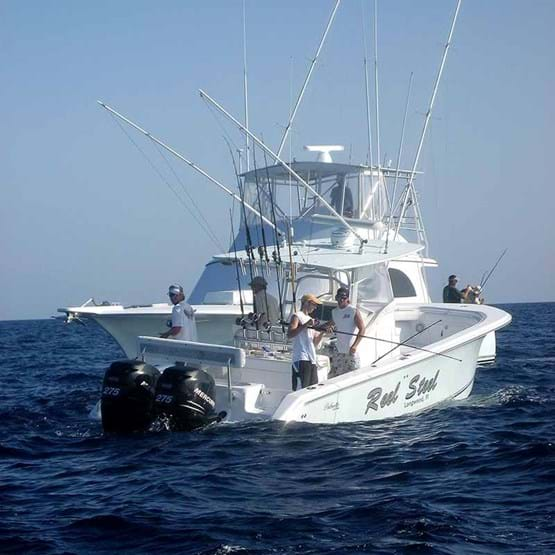 Anglers fishing off an offshore recreational boat