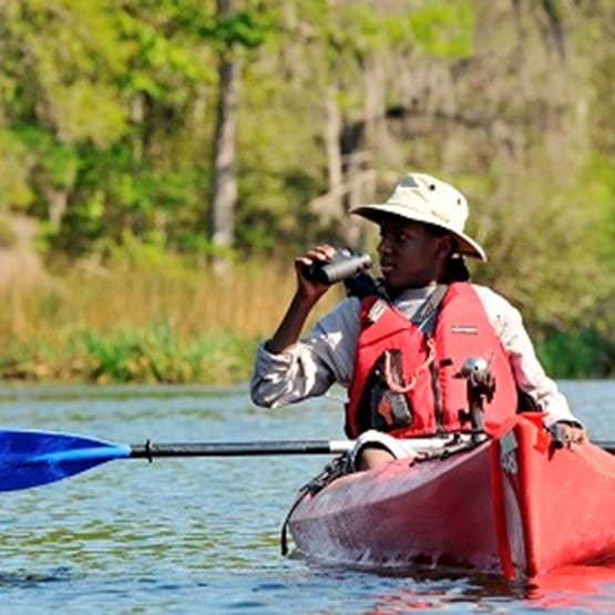 Bird Watching and Kayaking