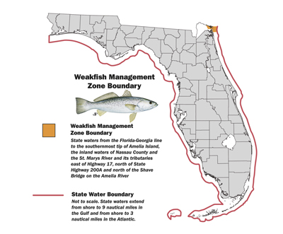 Weakfish zone boundary map